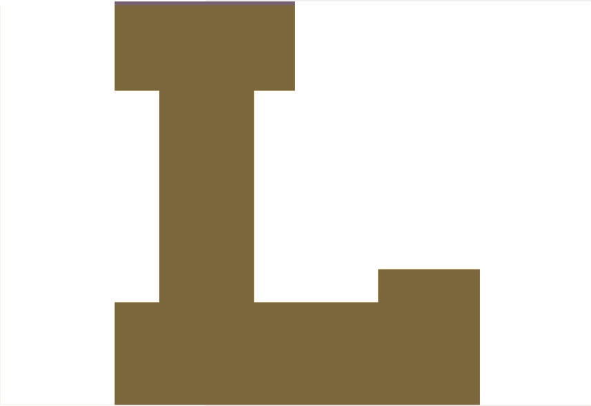 Loras L 2017 year in review